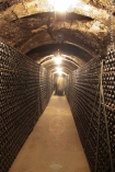 In the cellar of Recaredo